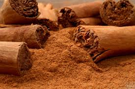skorica cinnamon