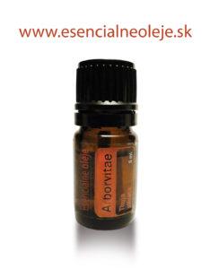 obr. esencialneho oleja z arbovitae