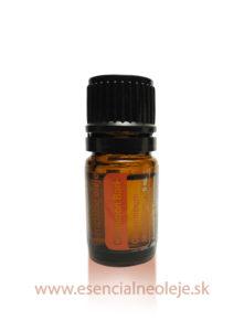 obr. Skořicový esenciální olej