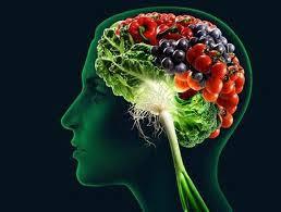 obr. podpora dravia mozgu